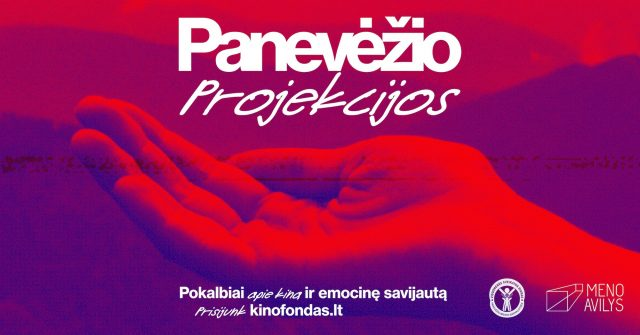 PNVZ-projekcijos-horizontalus